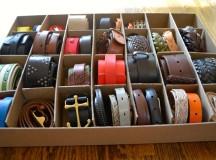 Organization: Belts