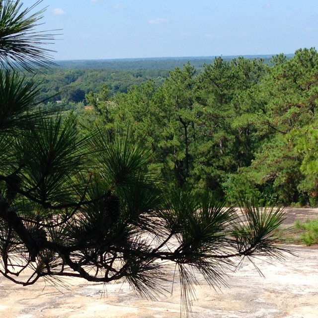 Hiking at Stone Mountain Park 8