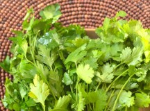 Quick Tip: Add Cilantro and Parsley to Smoothies!
